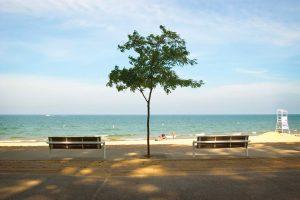 Lake Michigan Resort Community